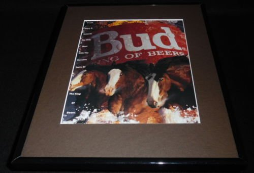 Clydesdale Beer - 4
