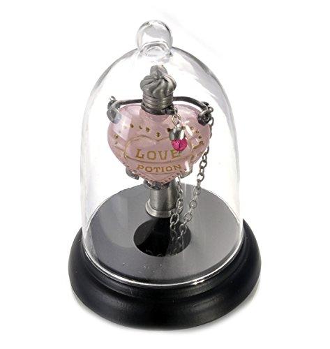 Price comparison product image Noble Collection - Harry Potter présentoir pour pendentif Love Potion