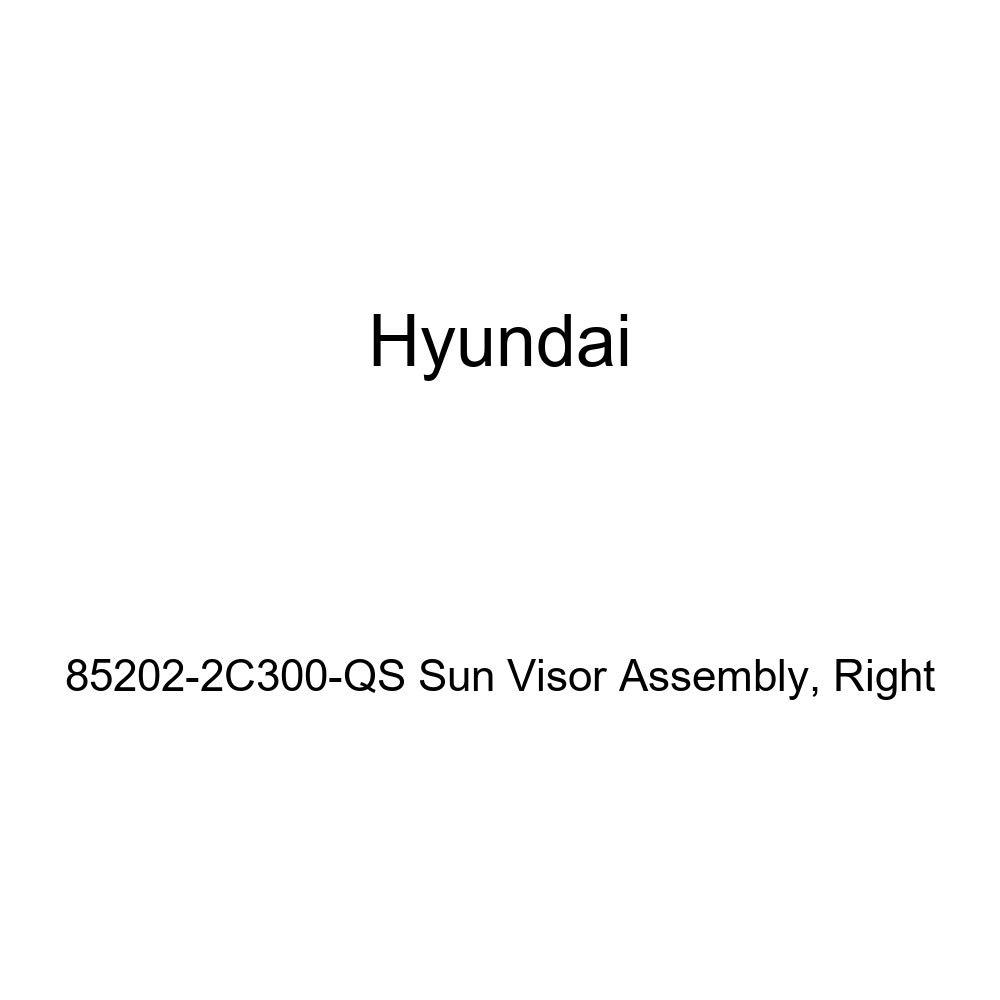 Right Genuine Hyundai 85202-2C300-QS Sun Visor Assembly