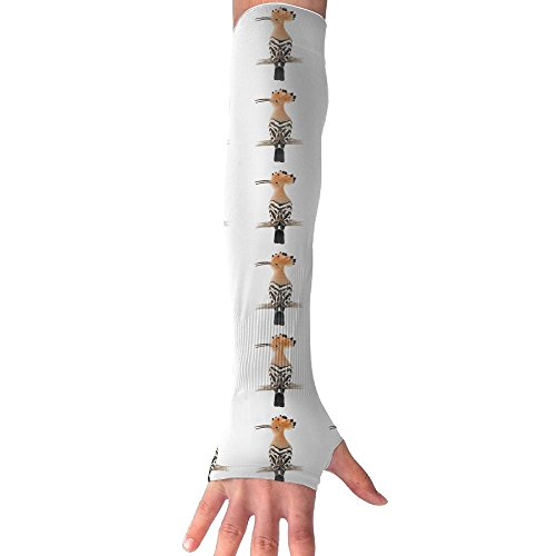 Hoopoe Bird Cooling Arm Sleeves Unisex Sun Block UV Protection International Fashion