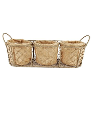 Medley Wall Hanging (Blossom Bucket Three Jute Planters In Mesh Basket with Handles - 3 x 12)