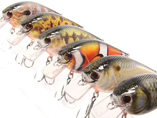 6 Hard Baits Fishing Lures in One Tackle Box Crankbait RealSkin Painting for Bass Fishing -