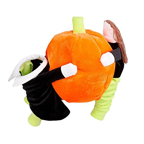 Bigface Up Pet Dog Cat Carrying Pumpkin Halloween Party Christmas Gift Fancy Costume M (Funny Halloween Pet Costumes)