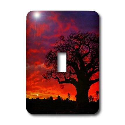 3dRose LLC lsp_69975_1 African Baobab Tree, Tarangire National Park, TanzaniaAf45 Aje0264 Adam Jones Single Toggle Switch