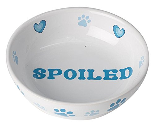 Pet Rageous 14043 Theo's Spoiled Saucer, White/Blue
