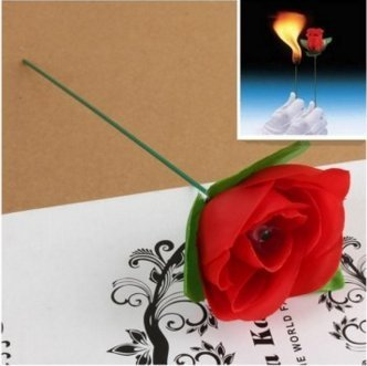 Stage Magic Trick Torch To Rose Tricks Flame Appearing Flower