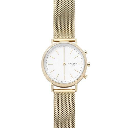 Skagen Women's 'Hald' Quartz Stainless Steel and Mesh Smart Watch, Color Gold-Toned (Model: SKT1405)