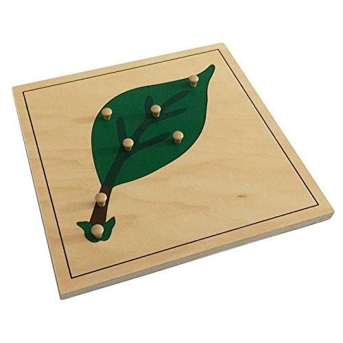 Montessori Leaf Puzzle