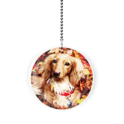 Gotham Decor Autumn Dachshund Fan/Light Pull ()