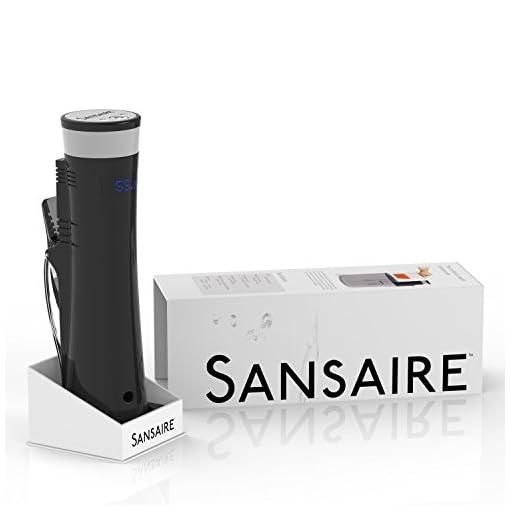 Sansaire SA15 Sous Vide Immersion Circulator 110v, Black