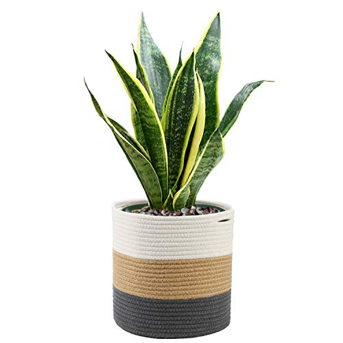 Woven Cotton Rope Plant Basket up to 10'' Flower Pots Floor Indoor House Potted Plant Planters Pots Washable Storage Organizer Basket Natural Materials Handwoven Modern Home Décor, 11''×11''