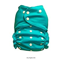 Easy Peasies One Size 8-50lbs AIO Cloth Diaper Dry Nights Nighttime Couche Lavables TE1 (Fundy Sky)