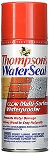 Thompsons 10100 Aerosol Water Seal Multi-Surface Waterproofer 12oz