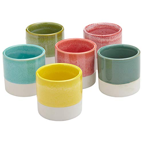 Rivet Modern Colorful Stoneware Garden Planter Flower Pot Set – Set of 6, 2.95 Inch, Multicolor
