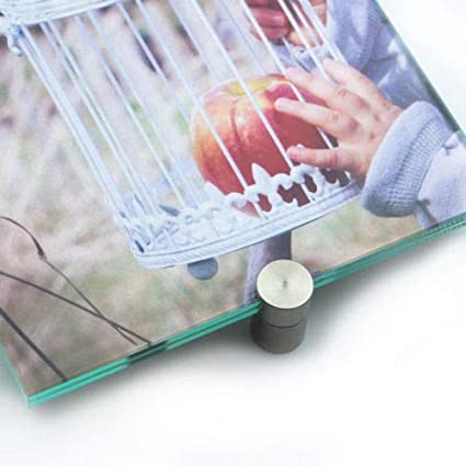 Pinza para cristal, juego de 4, con fijación de pinzas ...