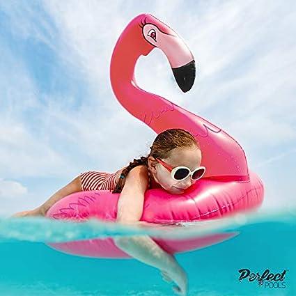 Perfect Pools Anillo de Goma Inflable Gigante de Flamenco Rosa | Flotador de la Piscina 110cm
