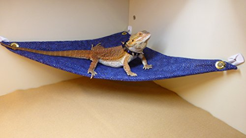 Hammock for Bearded Dragons, Blue Gold Metallic fabric with suction cup - 3 Dragon Designer