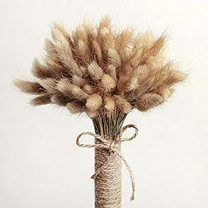 "Thai Decorated 50 Pcs Natural Dried Small Pampas Grass, Phragmites Communis, Foxtail Grass, Rabbit Dog Tail Grass, Dry Bouquet, Wedding Flower Bunch, Size 14""-17"" Home Décor 82"