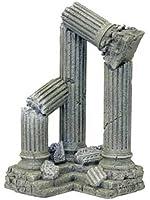 Rosewood Blue Ribbon Ruins Wrecks And Skulls Column Ruins Corner