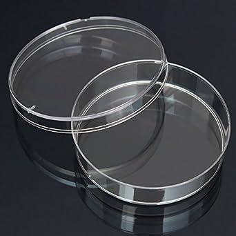 10pcs Disposable Clear Plastic Petri Dish Bacterial Culture Dish Plate 55X15mm & 10pcs Disposable Clear Plastic Petri Dish Bacterial Culture Dish ...