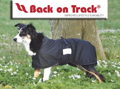 Back On Track Therapeutic Mesh Dog Blanket - Size:30-35'' (86 cm) XL Color:Black by Back on Track