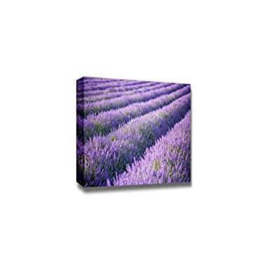 Dazzling Expert Craftsmanship, Beautiful Scenery Landscape Rows of Scented Purple Lavender in a Field Wall Decor, Classic Artwork