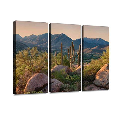 BELISIIS Pinnacle Peak Park as Sun Rises Over Cactus and Hiking Trails Wall Artwork Exclusive Photography Vintage Abstract Paintings Print on Canvas Home Decor Wall Art 3 Panels Framed Ready to Hang