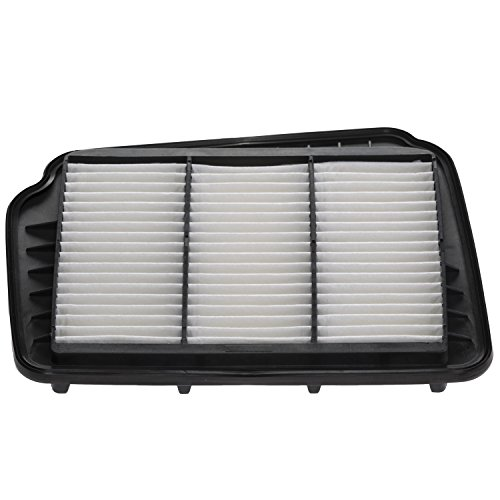 Champion CAP10193 Panel Air Filter