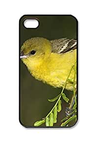 PC Hard Shell Yellow Bird on a Thin Branch with Black Edges Skin for Iphone 4 4s Case
