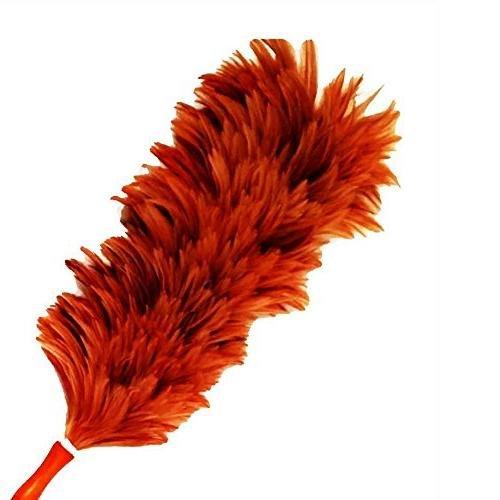 chicken brush - 4