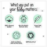 Lamaze Organic Baby Organic Baby/Toddler