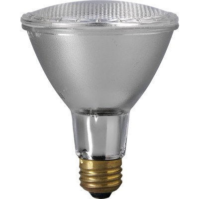 EiKO 60PAR30LN/H/SP-120V - 60 Watt Lamp of Type PAR 30LN (Case of 15) by Eiko
