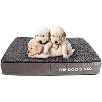 Amazon.com : The Dog's Bed Orthopedic Dog Bed Small Grey