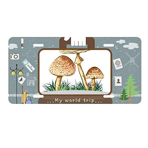 - DIYthinker Cute Green Plant Truffle Illustration License Plate Car Decoration Tin Sign Travel