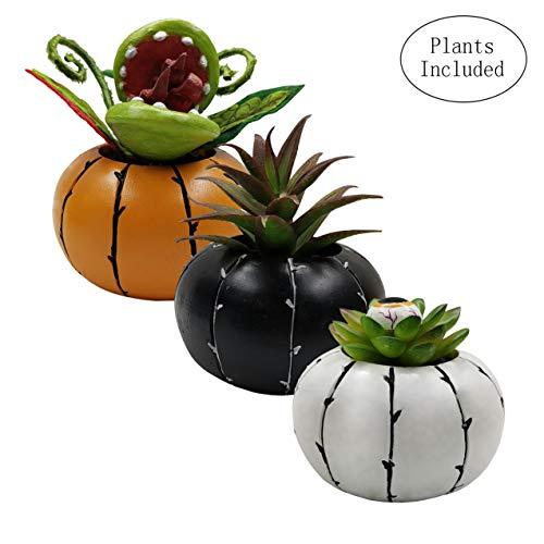 JIUCHEN Halloween Décor, Artificial Succulent Plants, Assorted Decorative Faux Succulent Potted Fake Plants in Creepy Pumpkin Pots, Set of