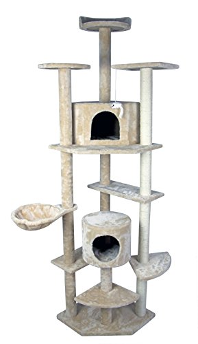 with Cat Stairs & Ramps design
