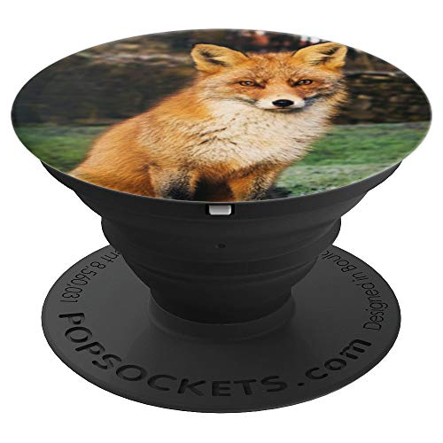 (Fox Beautiful Wild Furry Animal - PopSockets Grip and Stand for Phones and Tablets)