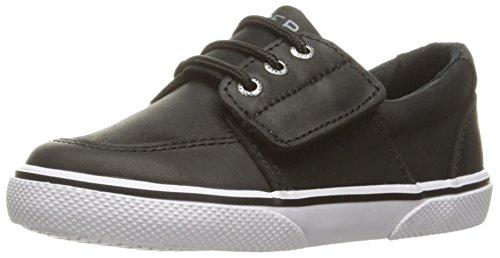Sperry Ollie Alternative Closure Sneaker (Toddler/Little Kid), Black Leather, 8 M US Toddler