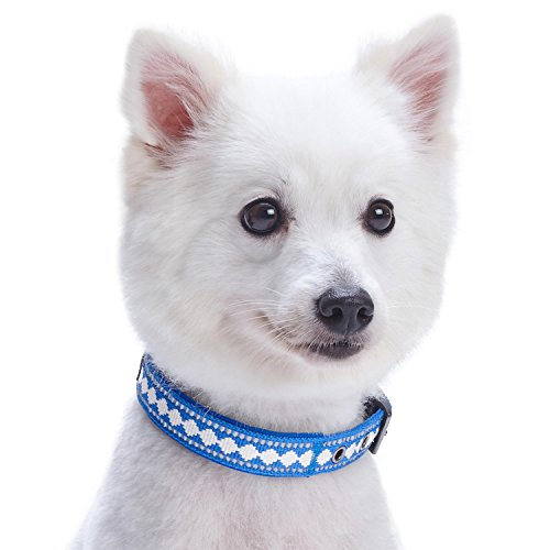 Image of Blueberry Pet 7 Colors Soft & Comfy 3M Reflective Jacquard Padded Dog Collar with Metal Buckle in Palace Blue, Neck 13-16.5