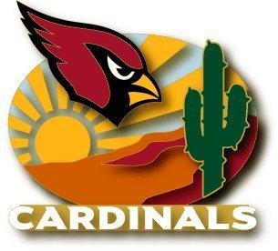 NFL Arizona Cardinals City Pin