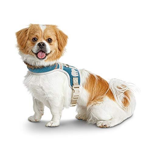 - Bond & Co. Intarsia Polar Bear and Fair Isle Dog Harness, XX-Small