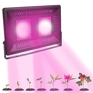 LED Grow Light espectro completo Cob lámpara para invernadero plantas de interior flores jardín planta de cultivo lámparas amplia área de cobertura LED de 50W 100W resistente al agua IP67para interiores al aire libre luces