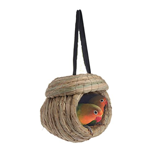 Stebcece Natural Straw Braid Bird Nest for Macaw Swallow (L) by Stebcece