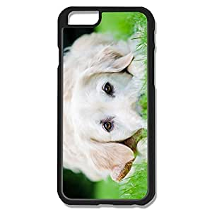 IPhone 6 Cases White Dog Design Hard Back Cover Shell Desgined By RRG2G by icecream design