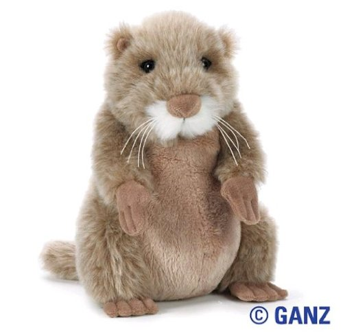 (Webkinz Prairie Dog with Trading Cards)