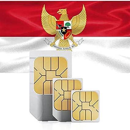 Tarjeta SIM de prepago para Indonesia, Singapur y Sri Lanka con 2 GB de Datos de Alta Velocidad válidos Durante 30 días.: Amazon.es: Electrónica