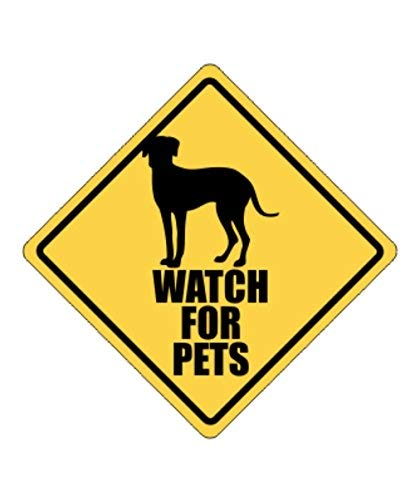 Watch for Pets Catahoula Leopard Dog - Dogs - Crossing Sign Aluminum Metal - 12x12 inch