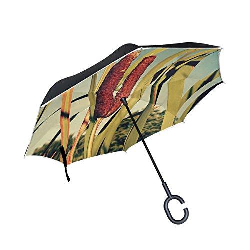 - IIAKXNB Double Layer Inverted Cattail Plant Latifolia Broadleaf Bulrush Umbrellas Reverse Folding Umbrella Windproof Uv Protection Big Straight Umbrella For Car Rain Outdoor With C-shaped Handle