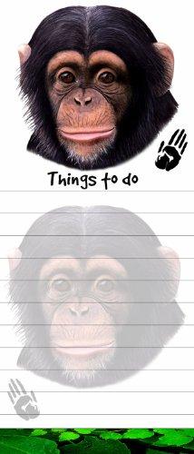 Pet Chimpanzee - 8