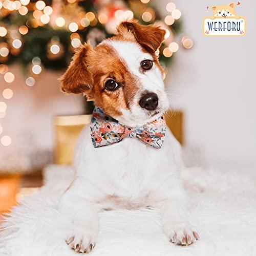 Bunt Hundehalsband mit Schleife, Süße Hundehalsbänder Geeignet für Kleine/Mittelgroße/Große Hunde und Katzen, Bequemes und Verstellbares Hundehalsband, Orange XS